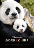 Born_in_China
